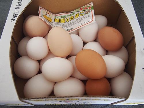 沖縄県の与那原町で朝採り卵を1.5kg買っています