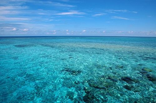テレビで光浦靖子さんが「沖縄に週末移住?」と言っていました!