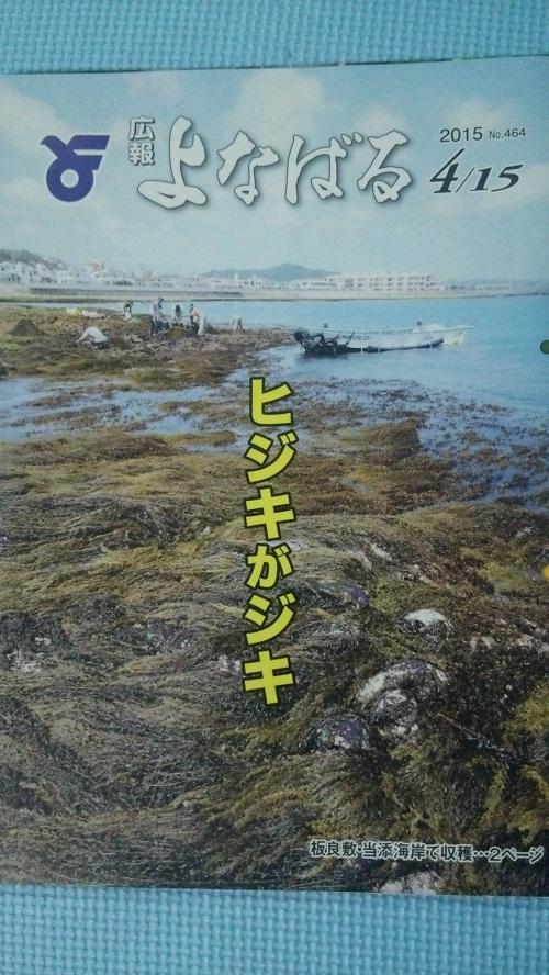 沖縄県の与那原町で「ヒジキがジキ」で豊作みたいです?!