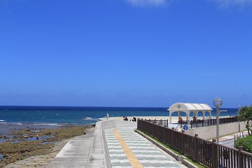 沖縄の海は最高!10ヶ月ぶりにダイビングで潜って来ました。