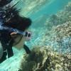 まだまだ沖縄の海はシュノーケル出来ますよ~!
