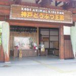 神戸空港から1番近い「神戸どうぶつ王国」子連れに大人気の秘密は?