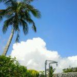 【沖縄移住生活】4人家族5月に掛かった生活費のまとめ