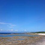 沖縄の青い海でシュノーケル!海を覗くと小魚がすぐに寄ってくる。