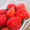 【ふるさと納税】今年1発目は福岡県のイチゴ「博多あまおう」からスタートです。