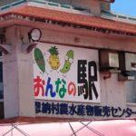 「おんなの駅」で発見!見ているだけで楽しい沖縄県産の不思議な野菜や果物達。