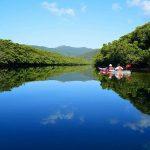 もうひとつの沖縄と呼ばれている「西表島」の押さえておきたいオススメは?
