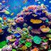 【今日は何の日?】3月5日は「珊瑚の日」なのでちょっと勉強しました。